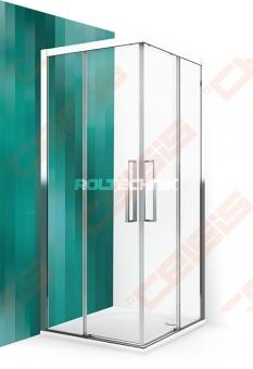 Dušo durys ROTH ECS2L/100 su brillant spalvos profiliu ir skaidriu stiklu